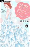 社内マリッジハニー【マイクロ】(29)