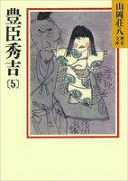 豊臣秀吉(5)