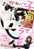 『かわいい子猫のアイランド ~漫画家が保護猫を引き取った話~』の電子書籍