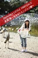 OKINAWA LITTLE TRIP Vol.3 永夏海 2 ~気ままにエンジョイ編~