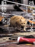 待ちつづける動物たち――福島第一原発20キロ圏内のそれから