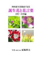 四枚組写真構成で見る誕生花と花言葉2~3月編