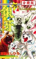 銀牙―流れ星 銀― 【分冊版】(75)