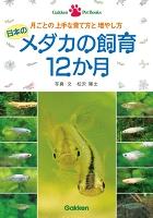 日本のメダカの飼育12か月