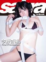 Final Provocation 今野杏南3 [sabra net e-Book]