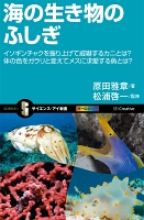 海の生き物のふしぎ