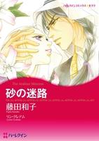 漫画家 藤田和子×シーク セット