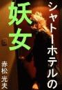 シャトーホテルの妖女―フランス・ロワール編―