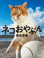 岩合光昭 写真集 「ネコおやぶん」