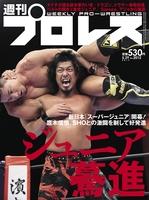 週刊プロレス 2019年 5/29号 No.2012