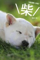 柴 SHIBA-INU