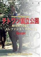 ネパール008チトワン国立公園