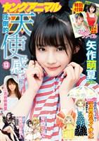 【電子版】ヤングアニマル No.13(2019年)