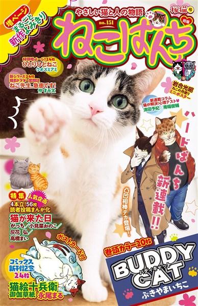 ねこぱんち 桜猫号 No.151
