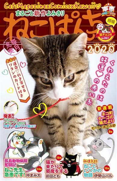 ねこぱんち 猫チョコ号 No.161