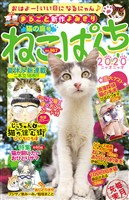ねこぱんち 猫の庭号 No.167