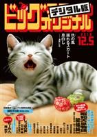 ビッグコミックオリジナル 2018年23号(2018年11月20日発売)