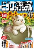 ビッグコミックオリジナル 2019年16号(2019年8月5日発売)