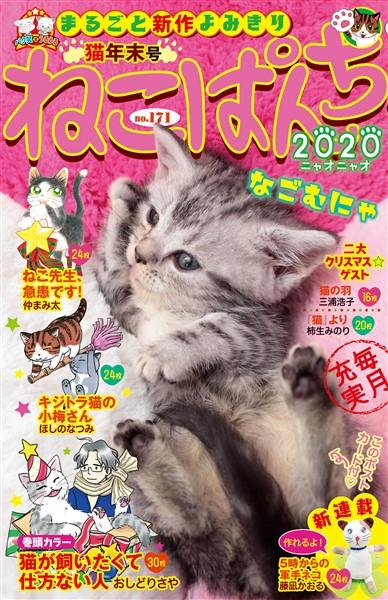 ねこぱんち No.171 猫年末号
